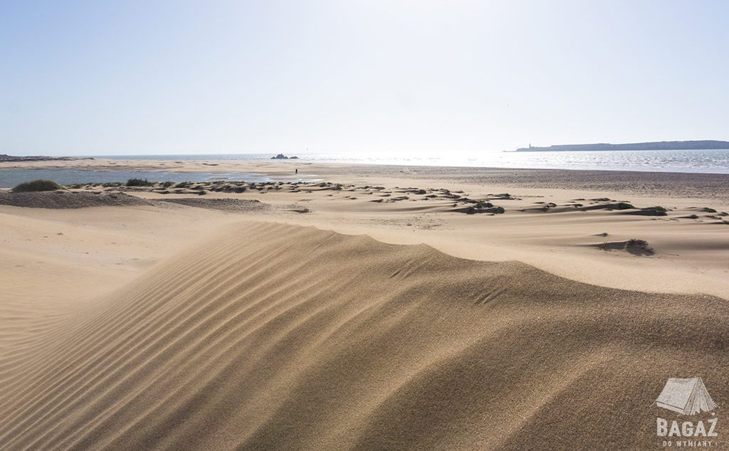 wydmy morze atlantyk