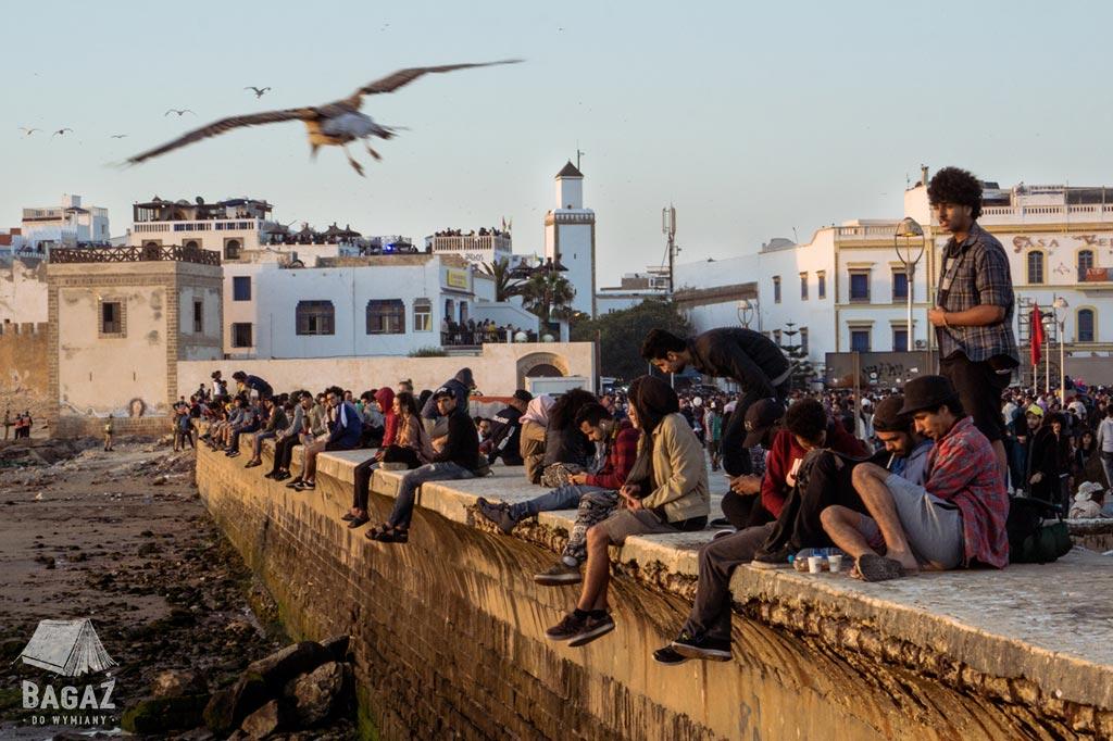 młodzi ludzie i przelatująca mewa podczas festiwalu muzyki gnaoua w mieście essaouira
