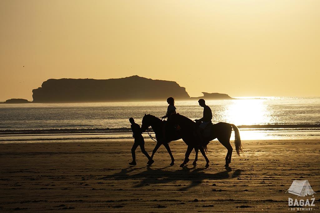 romantyczna przejażdżka konna na tle zachodzącego słońca i wyspy Mogador u wybrzeża Essaouiry