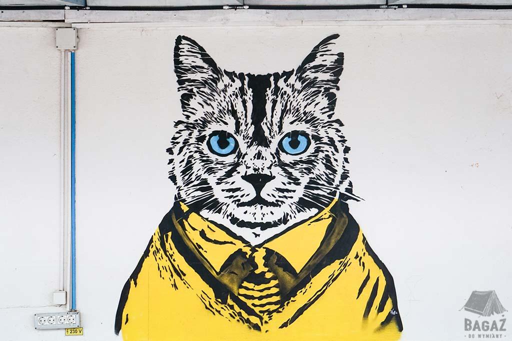 graffiti z kotem w rumuńskiej wiosce hipisów