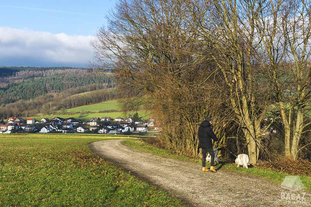 mężczyzna spacerujący z 2 psami po niemieckiej wsi