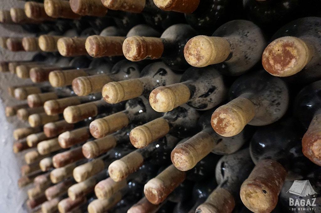 stare zakurzone butelki wina w winiarni Cricova