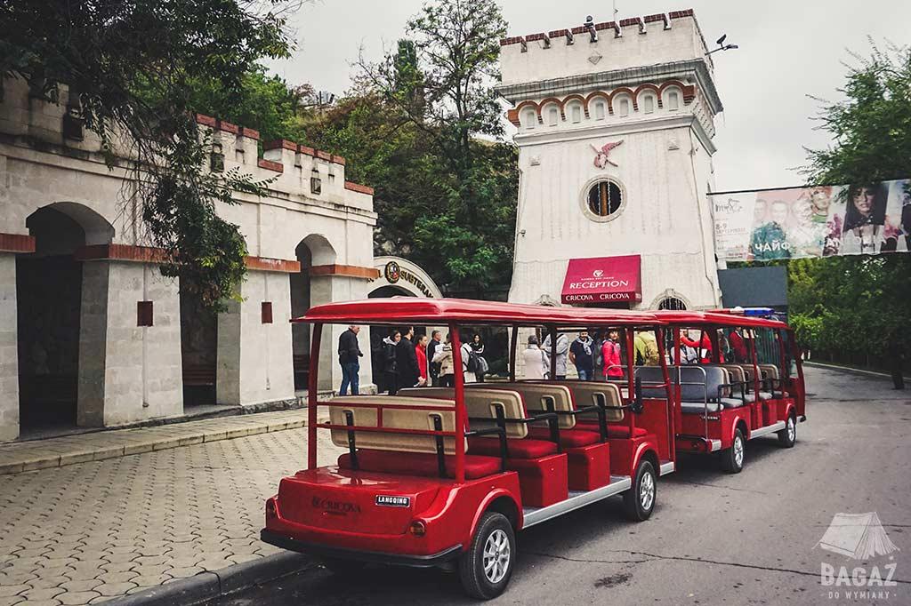 recepcja i turystyczne meleksy przed winnicą cricova w mołdawii